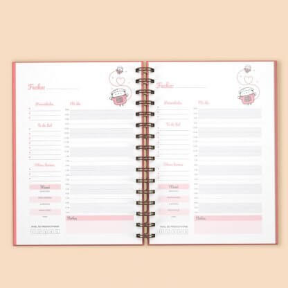 planner diario 3