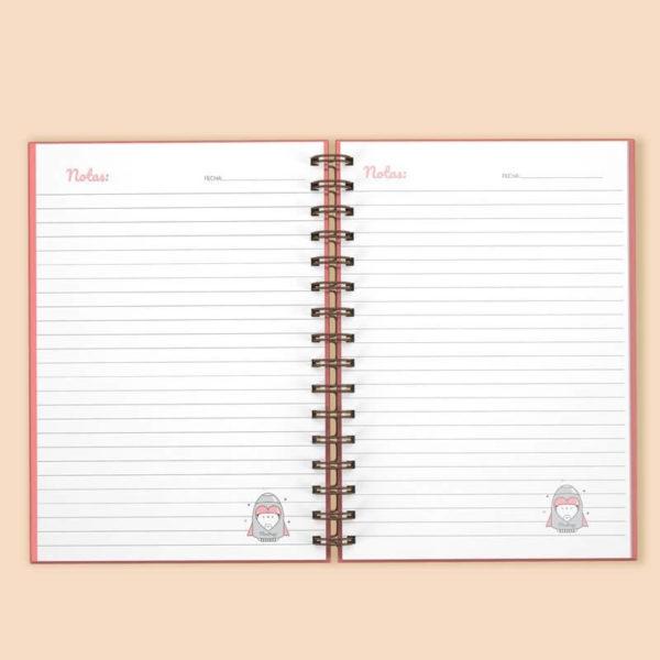 planner diario 4