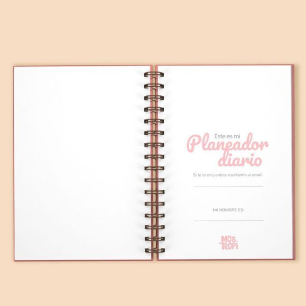 plannerdiario2